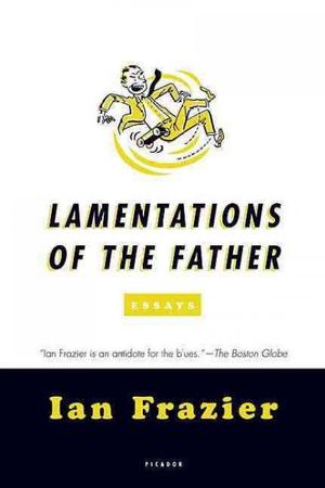 Lamentations of the Father: Essays Lower Priced Than E-Books